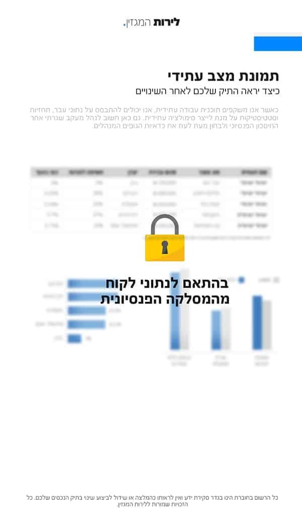 תכנון פיננסי - תמונת מצב עתידי