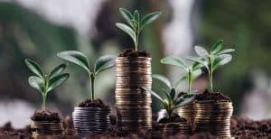 קרן השקעות